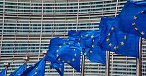 EU flags_web