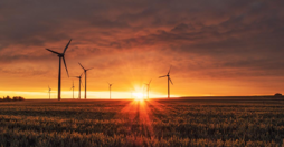 Renewable energy - unsplash - cropped